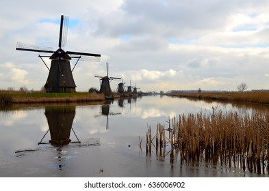 Historical windmills on the river bank with rushes in front of the photo. Typical Dutch autumn scenery with cloudy sky. An UNESCO World heritage site. Dramatic scenery.