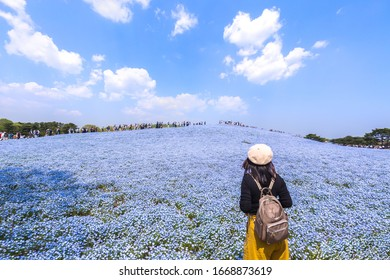 Hitachi Seaside Park is located in Ibaraki, Japan.