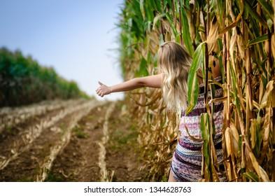 Hitch-hiking woman in corn  - Shutterstock ID 1344628763