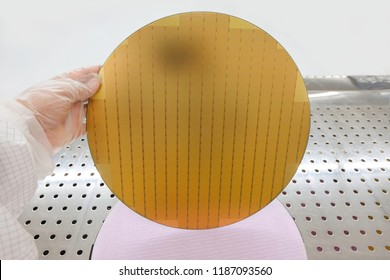 hi-tech industry, Hands wear gloves holding the silicon wafers for production. Semiconductor, shadow reflect on the silicon wafer