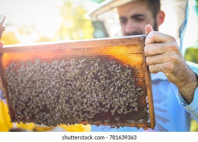 Hive frame with lots of bees checked by young beekeeper with smile on face, wearing protective equipment on his head.