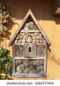 Hive for wild bees