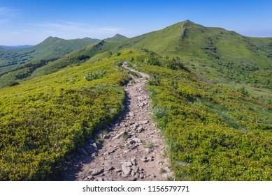 Hking path to mount Halicz in Bieszczady National Park, Subcarpathian Voivodeship of Poland