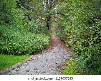 Hluboka Nad Vltavou, Czech Republic-October 1, 2014: Asphalt path runs through bushier of English park around Castle. Trees make arches over it. There are brown fallen leaves but no litter on the path