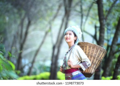 Hmong girl with traditional dress with basket of agricultural crops walking in the forest,Happy Hmong girl are standing smiling at green nature at Sapa town,Northern Vietnam.