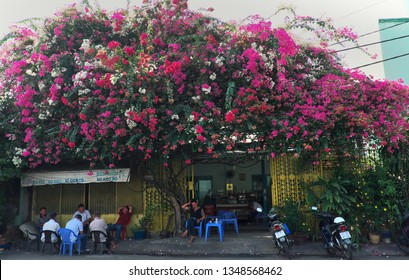 HO CHI MINH CITY, VIET NAM- MARCH 18, 2019: Amazing scene of cafe shop at morning, people sit under colorful bougainvillea flower trellis for coffee time, Vietnam