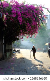 HO CHI MINH CITY, VIET NAM- APRIL1, 2019: Elderly woman with walking stick cross the road alone, her shadows long on street with pink bougainvillea flower bush bloom vibrant in summer, Vietnam