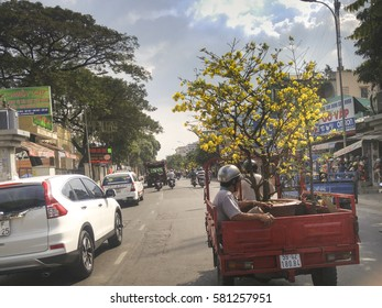 Ho Chi Minh City, Viet Nam - January 25, 2017: Image of a man who is driving a pot of apricot flower tree in the street by motorcycle in Ho Chi Minh city during the Lunar New Year 2017