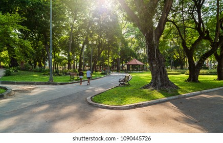 Ho Chi Minh city, VIETNAM, April 16, 2017; City park, people walking. Natural green and large trees. View of the Tao Dan park in Saigon, Vietnam.