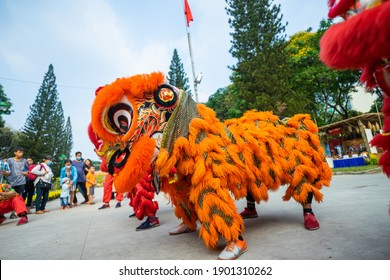 Ho Chi Minh city, Vietnam - 24 Jan 2021: Dragon and lion dance show in chinese new year festival (Tet festival ), lion Dance - dragon and lion dance street performances in Vietnam