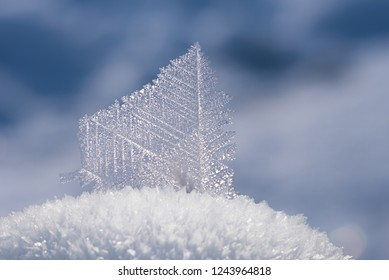hoarfrost crystal ice flake on frosty heap of snow, blurry winter background