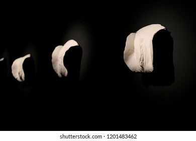 "HOBART, AUSTRALIA - AUGUST 29, 2016: ""Cunts... and other conversations"", a Greg Taylor and friends display at The Museum of Old and New Art (MONA), a controversial installation of 77 sculptures."