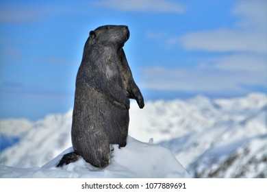 HOCHGURGL, AUSTRIA. APRIL 02, 2018. Statue of marmot facing snowy mountains, near top mountain star restaurant at hochgurgl,austria.
