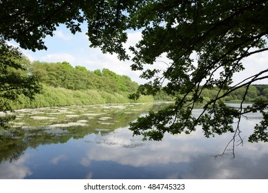 hofmannsweiher, a lake at Westerwald, Germany