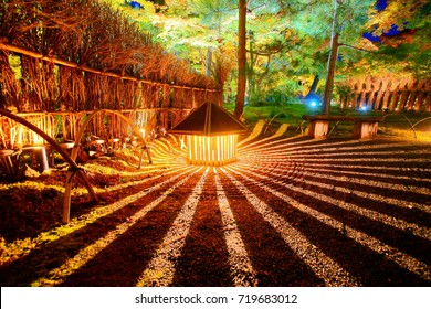 Hogonin Temple zen garden are reminiscent of the eighth century period Japan and is a major tourist attraction in Kyoto.Maple foliage illumination color in the early autumn night.