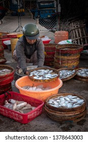 HOI AN, VIETNAM - MARCH 20, 2019: Woman sorting the fresh catch on the fish market in Hoi An, Vietnam.