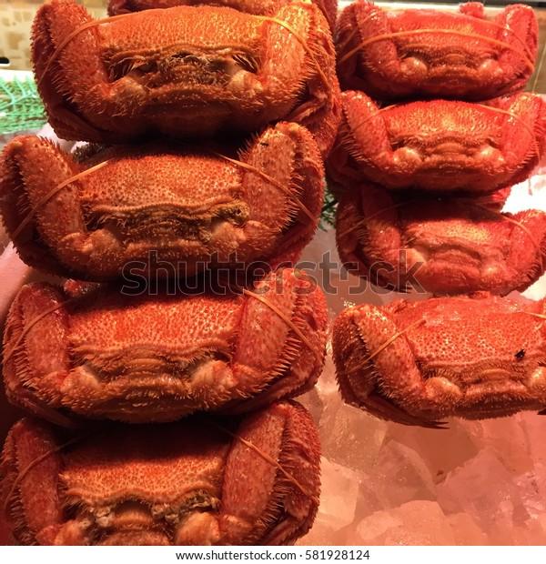 Hokkaido hairy crab