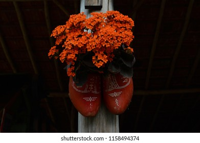 HOLAMBRA, SAO PAULO, BRAZIL - 20-SEPTEMBER, 2014: Dutch clog of wood being used as a vase, attached to a wooden beam on 33ª Expoflora Flower Fair in Holambra