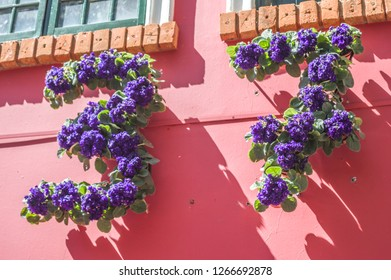 HOLAMBRA, SAO PAULO, BRAZIL - 23-SEPTEMBER, 2018: number 37 written with purple flowers