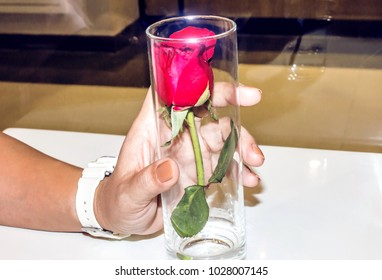 Hold a glass with a red rose inside the glass.