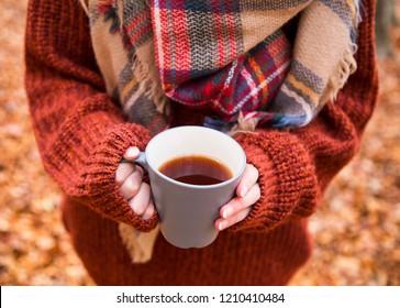 Holding cup of tea in autumn season, cozy female holding autumn tea