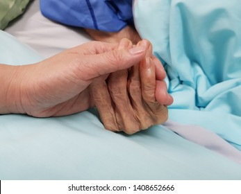 Holding grandmother's hand in the nursing care. Showing all love, empathy, helping and encouragement : healthcare in end of life care and palliative care in hospital concept
