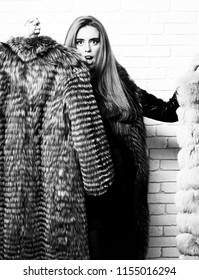 8f9428ab82f holding grey and beige fur coat on white brick wall studio background.  young fashionable sexy