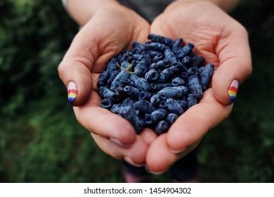 Blackberry Fruit Images, Stock Photos & Vectors | Shutterstock