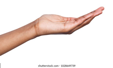 Holding or offering. Outstretched female hand, african-american woman keeping empty palm on white isolated background