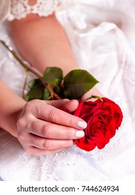 Holding single red rose in woman hands. Flowers in wedding or valentines day. Female glamour bride hand with red rose as symbol love