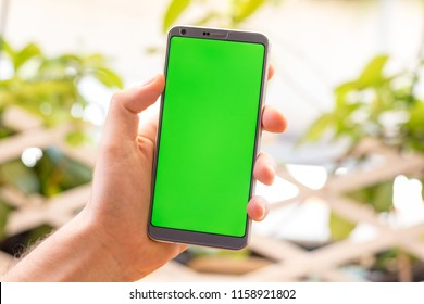 Holding a smartphone on hand with a blank green screen