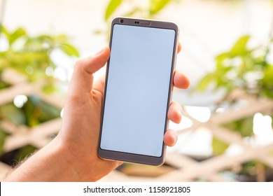 Holding a smartphone on hand with a blank white screen