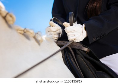 Holding team. Horsewoman wearing white gloves and dark blue jacket holding team in her hands