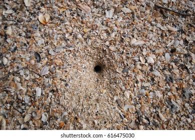 hole of sand