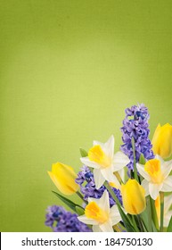 Holiday background with fresh flowers on canvas background. Abstract background for design. Spring background. Floral background.