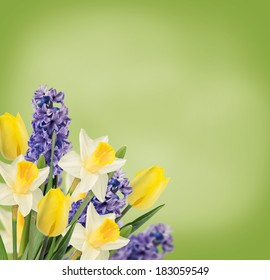 Holiday background with fresh flowers and place for your text. Abstract background for design. Spring background. Floral background.