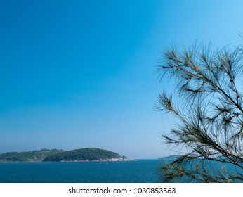Holiday concept more space for text. The branches and green leaves of pine tree. Background with mountain, blue sea, stone, blue sky and bright sunshine. At beach in Thailand.