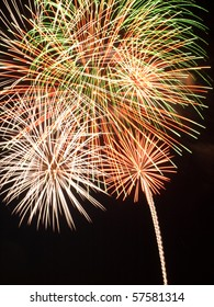 Holiday fireworks explode in a floral pattern