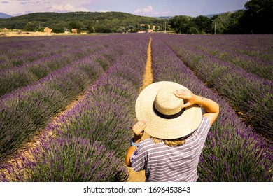 holiday in france in the lavender field