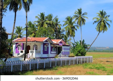 Holiday house surrounded by coconut tries.