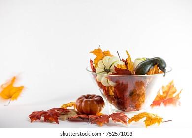 Holiday Seasonal Autumn Decorations