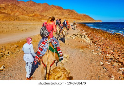 The holidaymakers enjoy the camel safari along the coast of Aqaba gulf with a view on colored mountains of Sinai desert, Egypt.