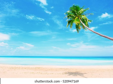Holidays Background. Beautiful beach with palm tree over the sand. Thailand beach