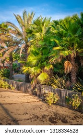 holidays on the azure coast of france, cottage and palm trees