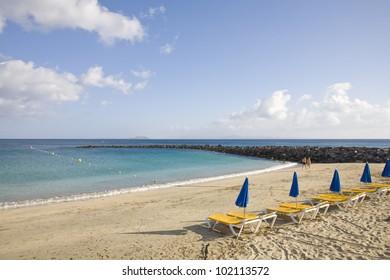 holidays on a tropical beach