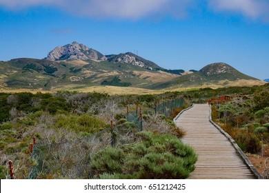 Hollister peak and boardwalk at Elfin forest Los Osos Bay wood California USA.