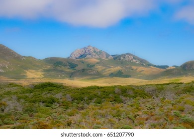 Hollister peak from Elfin forest Los Osos Bay wood California USA.