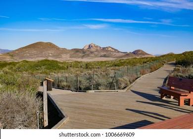 Hollister Peak from Elfin forest trail, Los Osos, San Luis Opispo, CA