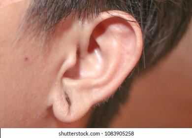Hollowed ear former piercings