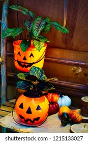 holloween pumpkin, use for decoration with tree